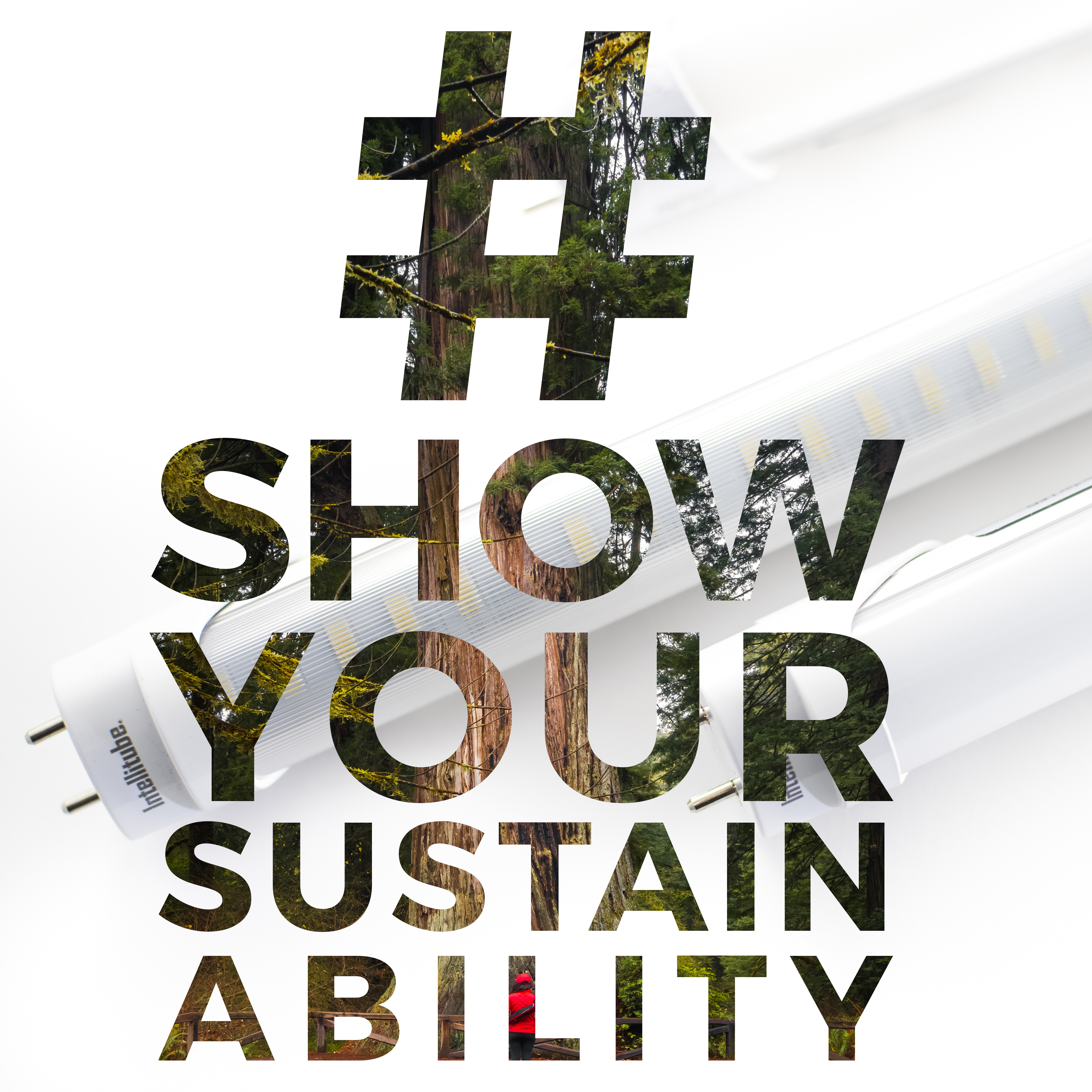 Share and #showyoursustainability in Instagram with Energy Focus